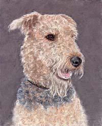 Пастель: Рисуем собаку